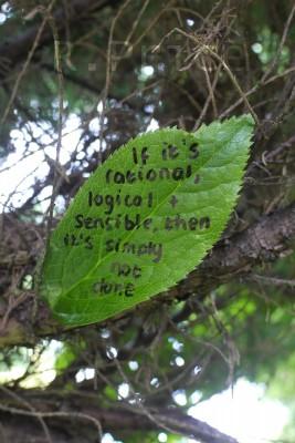 """""""Se algo é racional, lógico e sensato, então simplesmente não é feito."""""""